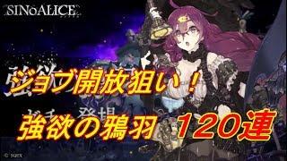 【SINoALICE】強欲の鴉羽120連【シノアリス】