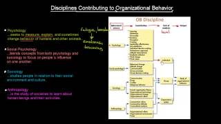 Disciplines Contributing To OB | Organisational Behavior | MeanThat
