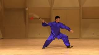 05 Chen Taichi Kwan Dao by Master HaiJun Wang of Wang HaiJun Chen Taichi Academy, England