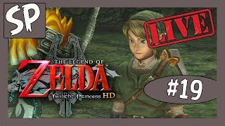 The Legend of Zelda: Twilight Princess HD #19