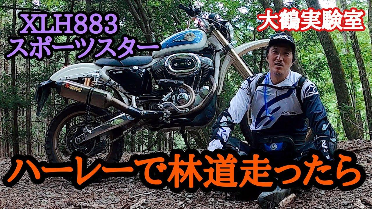 Sport Ster 883 Dirt Custom