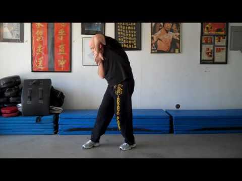 Biu Tze - Third Form - Pan Nam Wing Chun