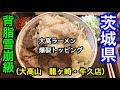 【大高山】龍ヶ崎・牛久店さん。茨城県ラーメンシリーズ。雪崩級の背脂からマグマ級…