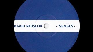 David Roiseux - Untitled ( Senses - B2 )