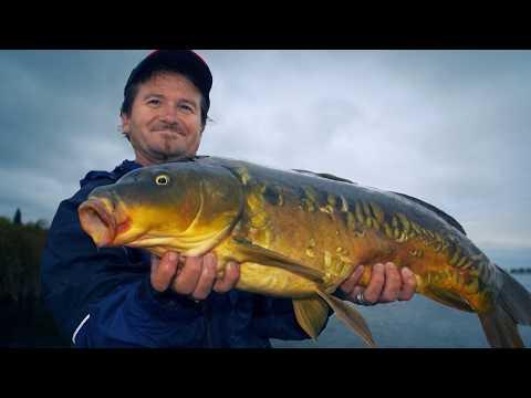Carp, Ontario's Best Kept Secret | Fish'n Canada