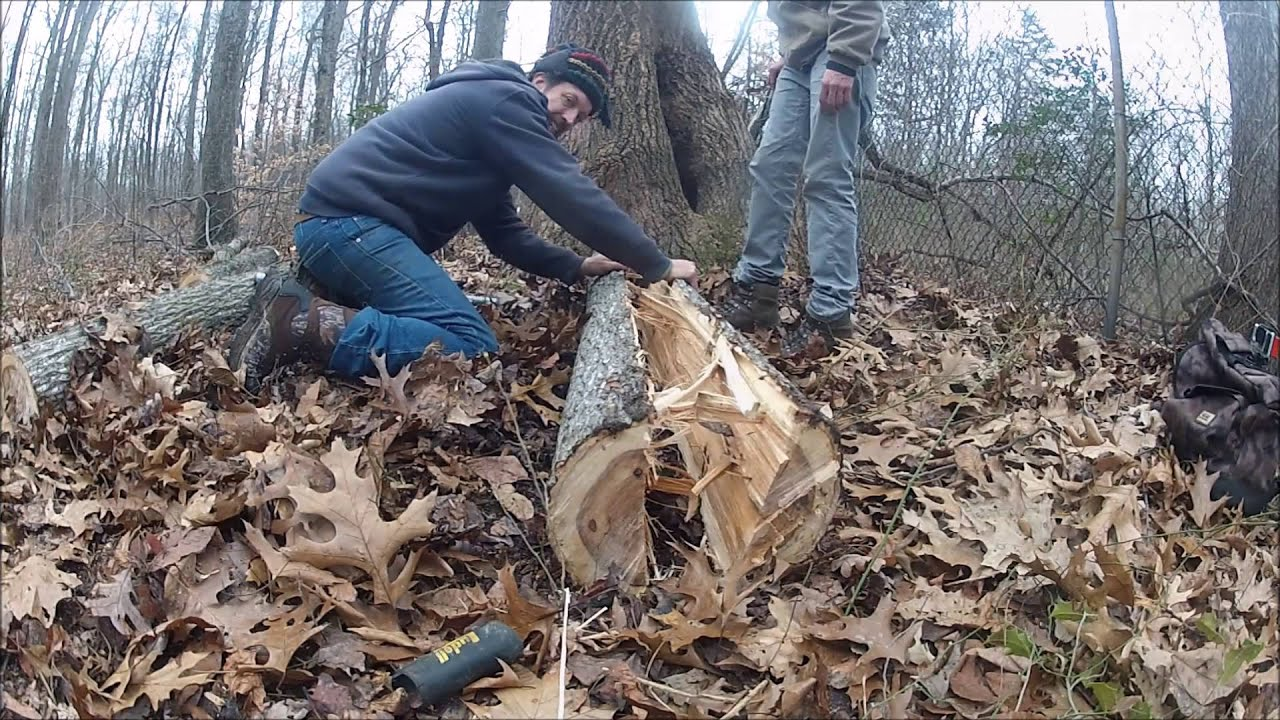 how to make a bow out of wood