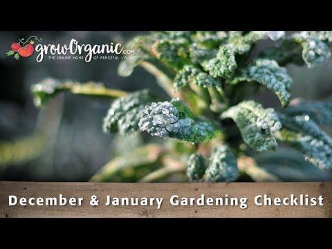 December & January Gardening Checklist - 30 Winter Gardening Tips and Tricks