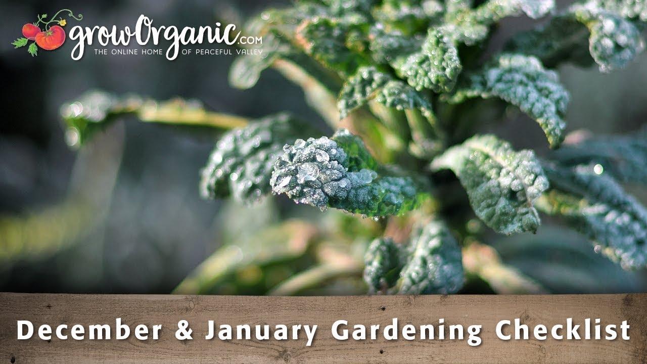 December January Gardening Checklist 30 Winter Gardening Tips