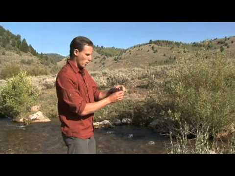 How To Measure Dissolved Oxygen In Water