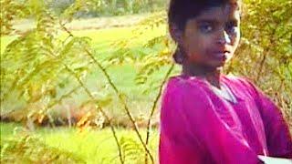 Beautiful Girls Of Tribe Near Jarida Melghat Amravati