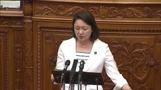 参議院本会議  総務委員長報告(2018/6/1)