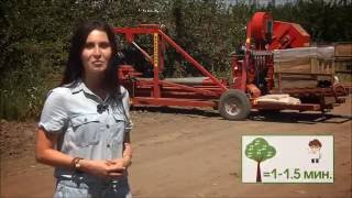 видео Агротехника вишни