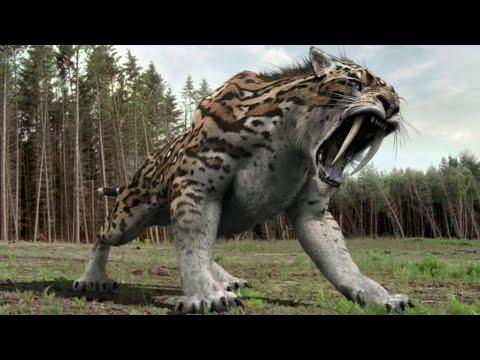 Smilodon | Enciclopedia sobre Dinosaurios