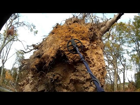 Metal Detecting Uprooted Trees