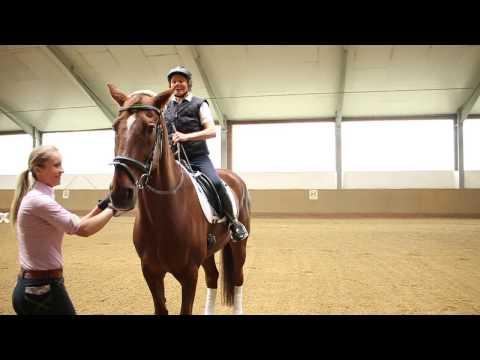 Bild: FN Serie - Pferde machen Menschen