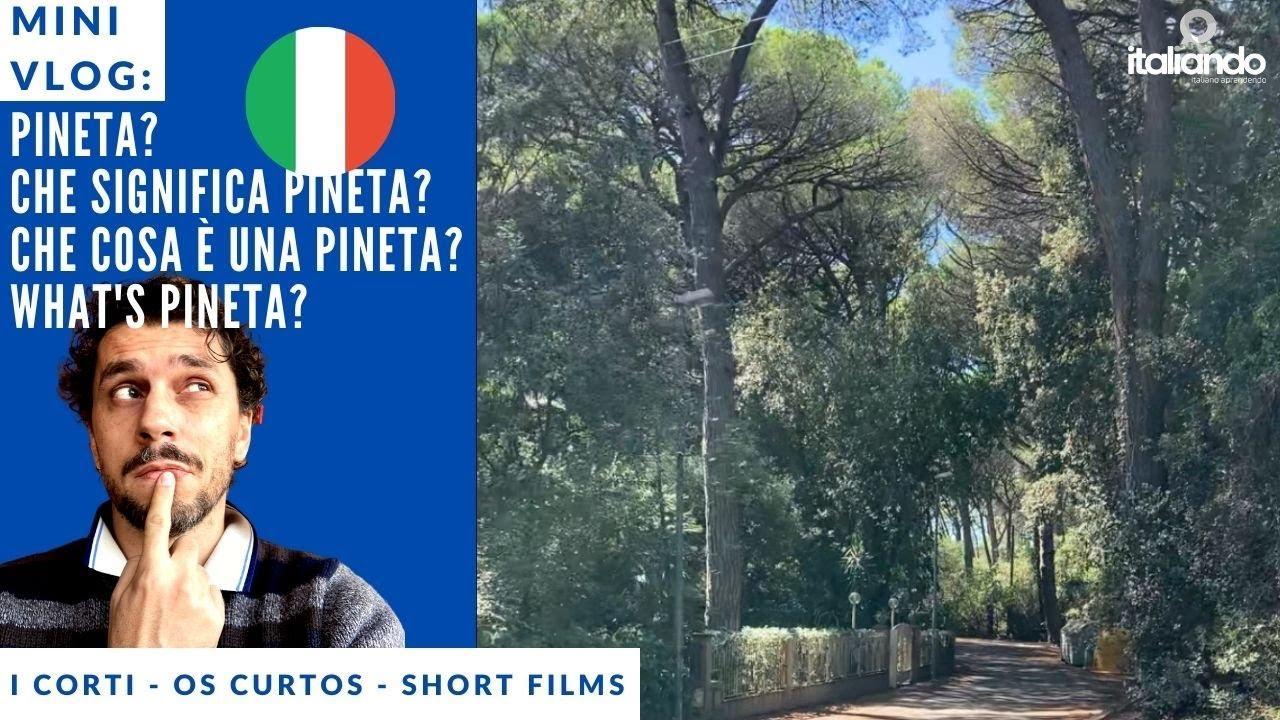 Che cosa è la Pineta, che cosa significa pineta? what's pineta? o que é pineta? i corti di italiando