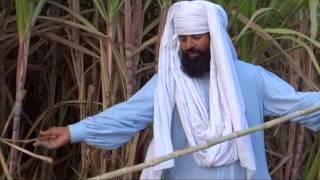 Organic Sugarcane by Using Bio Gas Plant Organic Fertilizer for growing Crops 17 Feb 2013 Pakistan