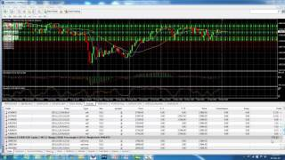 How to hit 100% accuracy in Forex - Acct 7912
