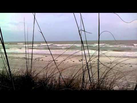 Tides Beach Club North Redington Beach Sea Sound
