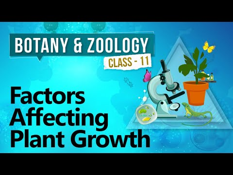 Factors Affecting Plant Growth - Plant Growth and Development  - Biology Class 11
