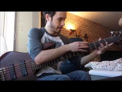 The Olive Tree - Scale The Summit bass cover