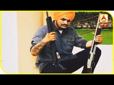 Punjab Government to form Law to Ban Gun culture and violence in Songs and Movies | ABP Sanjha