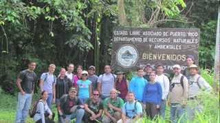 Geotrip al monte Tres Picachos - Jayuya, Puerto Rico