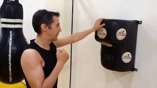 FAST Jet Kune Do 8 punches in ONE second - Left and right stance