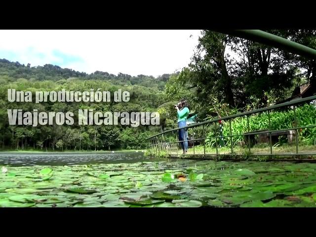 Aquí te traemos Selva Negra la finca más famosa de Centroamérica