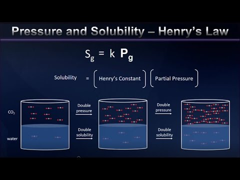 Henry's Law and Gas Solubility Explained
