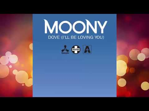 Moony - Dove (I'll Be Loving You) Original