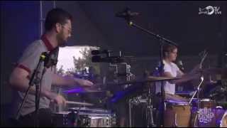 Bleachers - Wild Heart (Live @ Lollapalooza 2014)