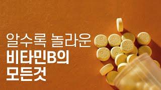 알수록 놀라운 비타민B의 모든것