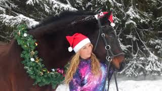 BACKSTAGE Новогодняя фотосессия с трюковой лошадью)))