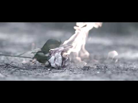 それでも尚、未来に媚びる『処暑』MV