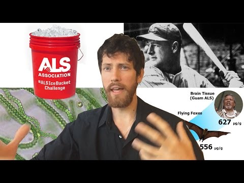 ALS/Lou Gehrig's Disease Cause and Cure?