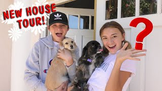 Our New House Tour! | We Are The Davises