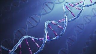 DNA cywilizacji 16.11.2012