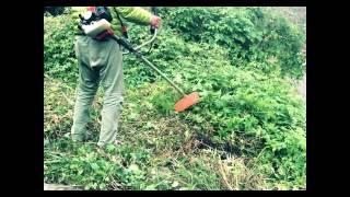 高尾ファーム 活動レポート① 八王子市上恩方町の草刈り