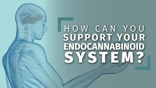 Natural Ways to Boost Your Endocannabinoid System