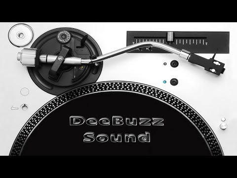 DeeBuzz Sound 100% Dubplate Mix