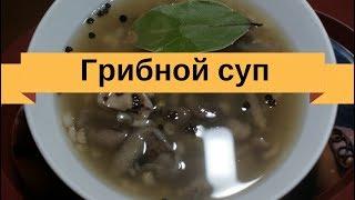 Как сварить грибной суп из свежих грибов