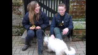 Dogs Trust Newbury: Sophie (a Junior Canine Carer Winner) With Puppy Doug