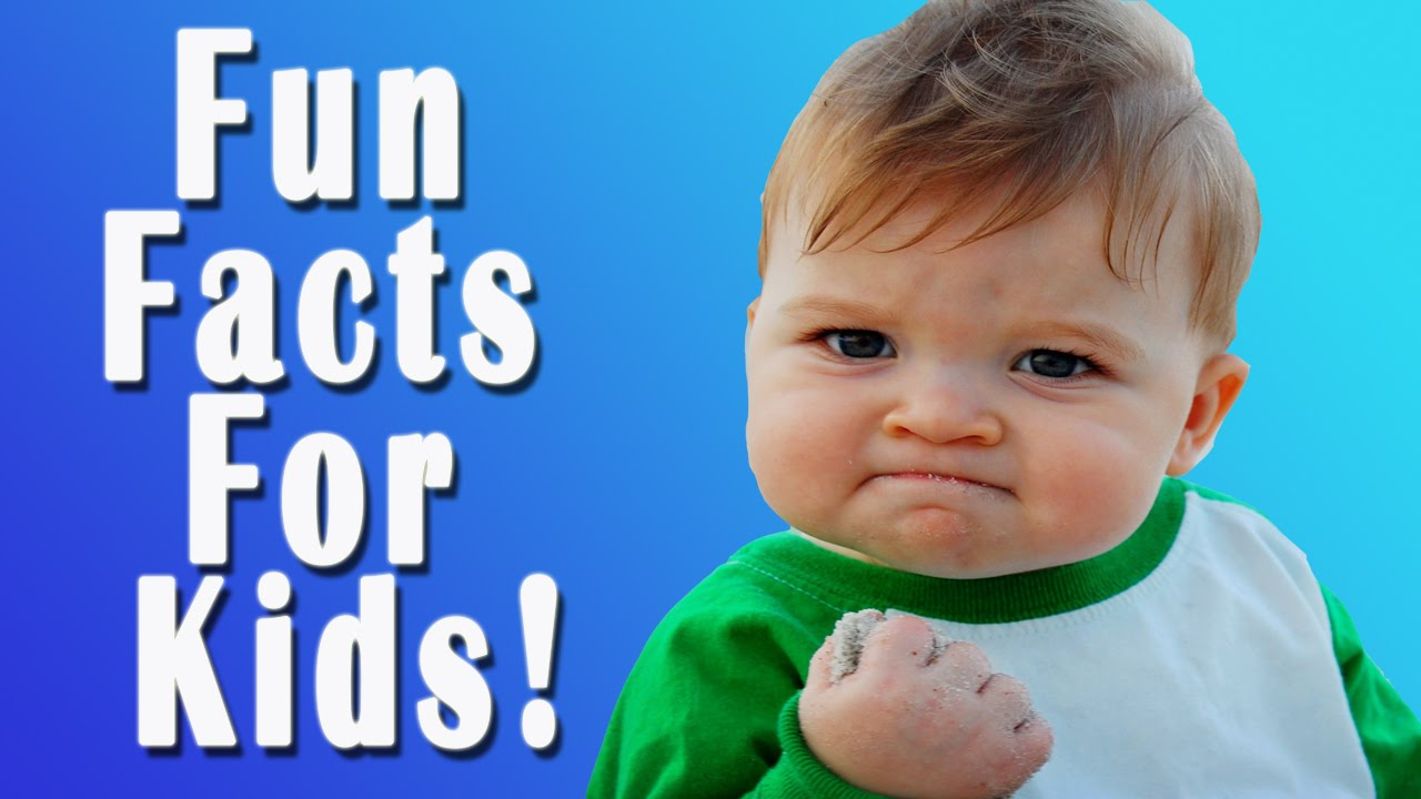 fun facts for kids youtube