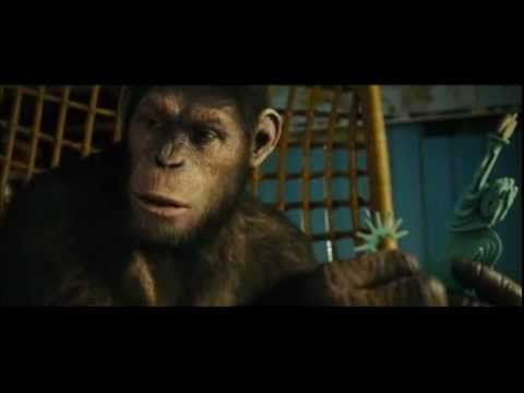 Rise Of The Planet Of The Apes - Kitchen Table/Neighbour