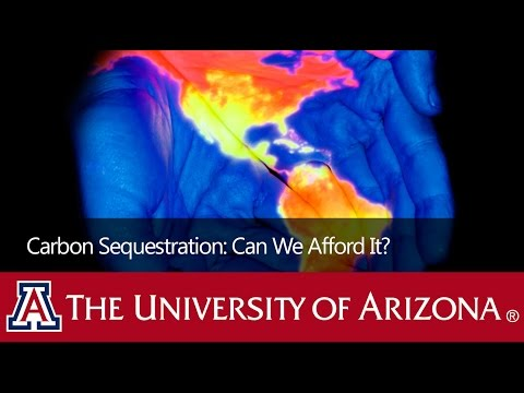 Carbon Sequestration: Can We Afford It?