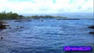Richardsons Ocean Park, Hawaii: Super Beaches Hawaii