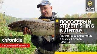 Salmon Street fishing in Lithuania. Gediminas Shauchuvienas, Alexey Soglaev, Part 2.