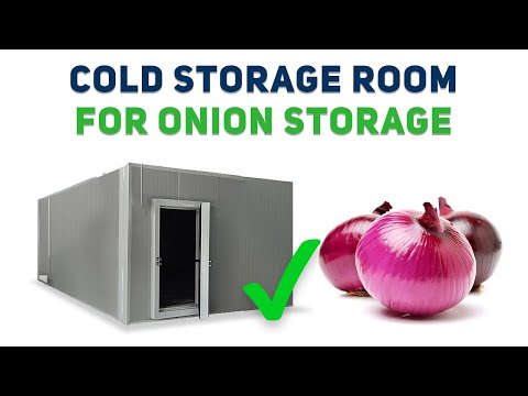 Low-cost Cold Storage Room For Onion And Other Vegetables - Cheap And Best