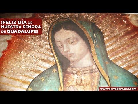 GUADALUPE - TIERRA DE MARÍA